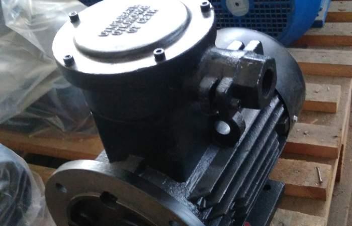 Взрывозащищенные электродвигатели